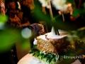 Taglio della torta nuziale durante il ricevimento di matrimonio al ristorante Al Fico a Grottaferrata