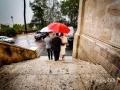 Uscita degli sposi al termine del matrimonio nella Chiesa di San Pietro in Montorio… sotto l'acquazzone