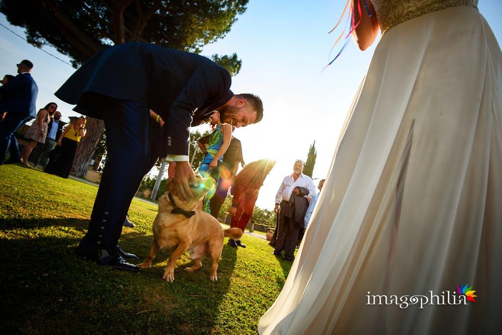 Coccole con il cane degli sposi al termine del matrimonio sul prato del Borgo della Cartiera Pontificia
