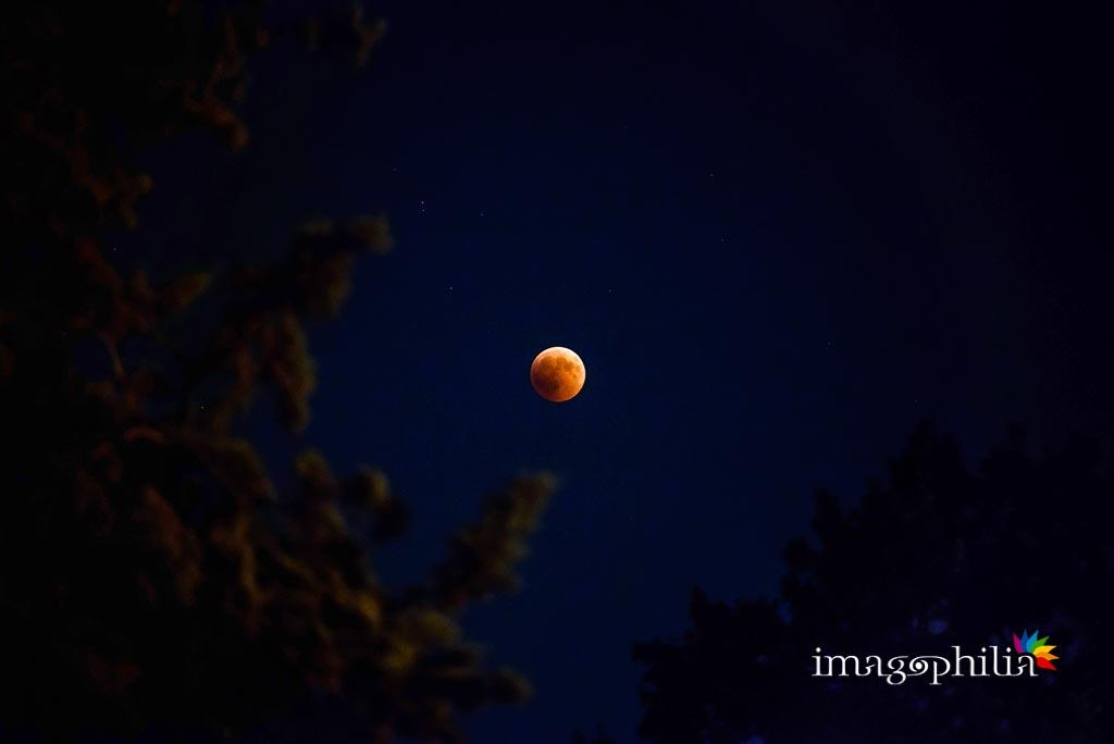 La formidabile luna rossa del 27 luglio 2018